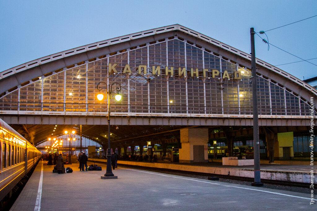 Поезд спб калининград купить билет билеты на самолет дешевые озон