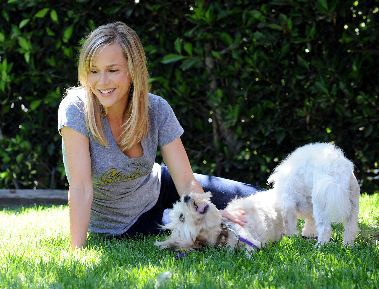 No Ordinary Family star Julie Benz playing with her dogs - Los Angeles