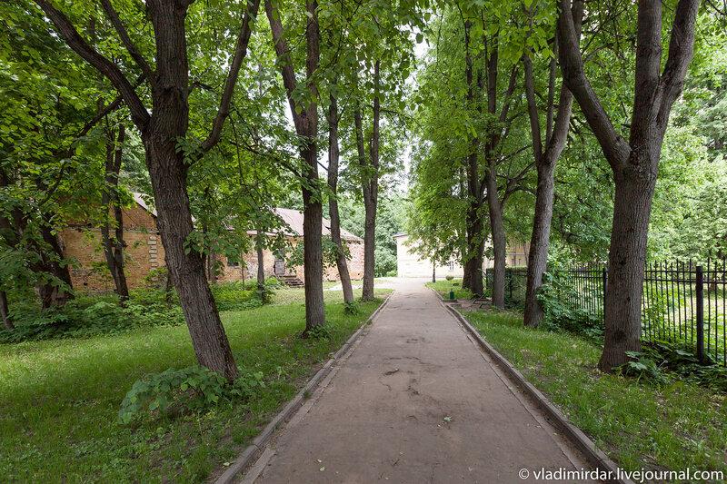 Аллея в парке усадьбы Суханово