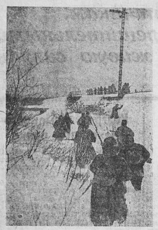«Красная звезда», 8 февраля 1942 года, как русские немцев били, потери немцев на Восточном фронте, красноармеец, Красная Армия, полководцы Красной Армии