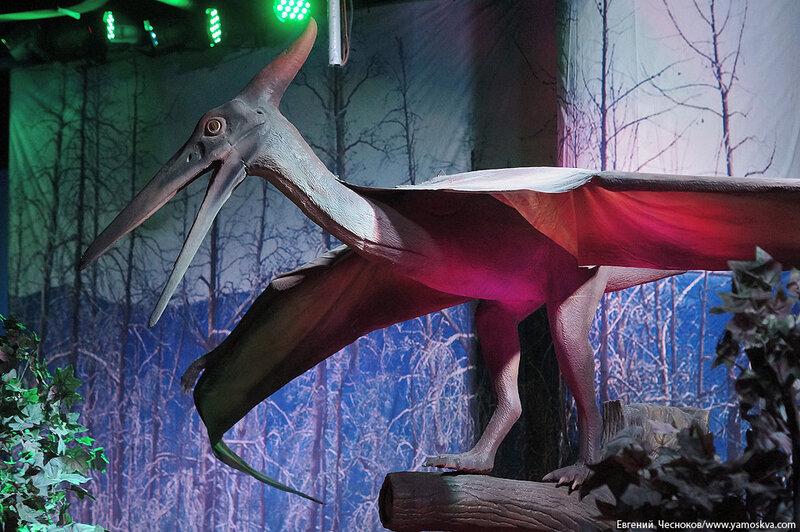 09. Детский мир. Динозавры. 31.03.15.04..jpg
