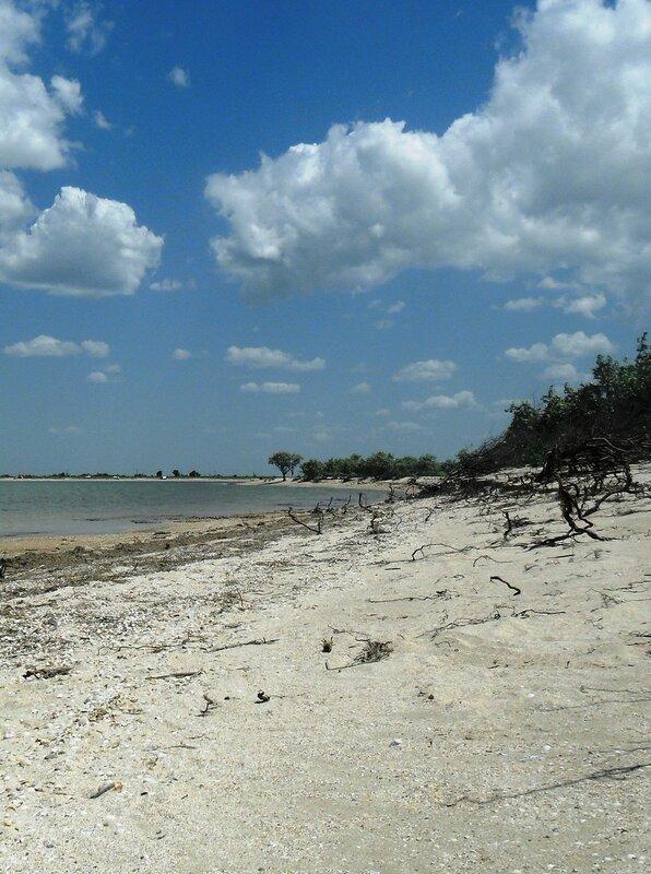 В летний день, у моря, с целью туристической ... SAM_8867.JPG