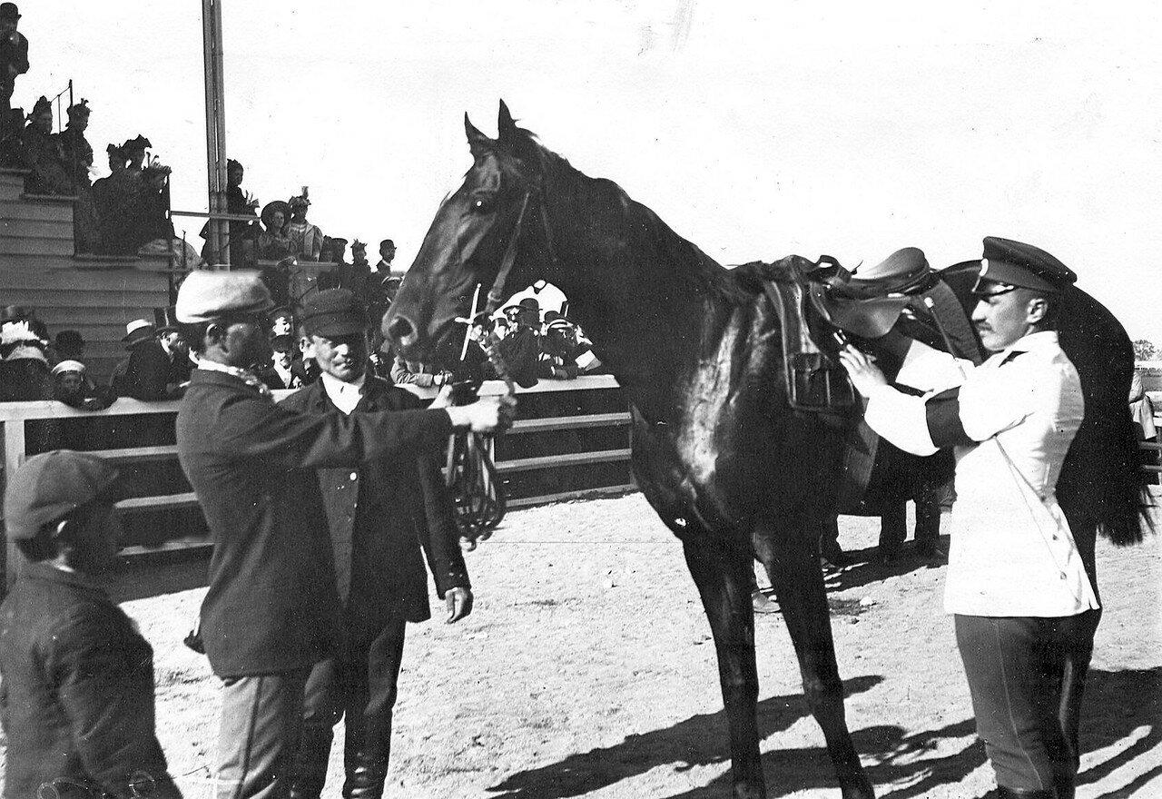 15. Жокеи подготавливают лошадь к заезду; на заднем плане трибуны со зрителям