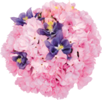flower (17).png