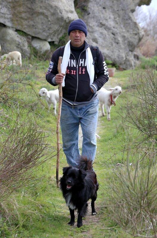 Искья, гора Эпомео. Горный пастух.