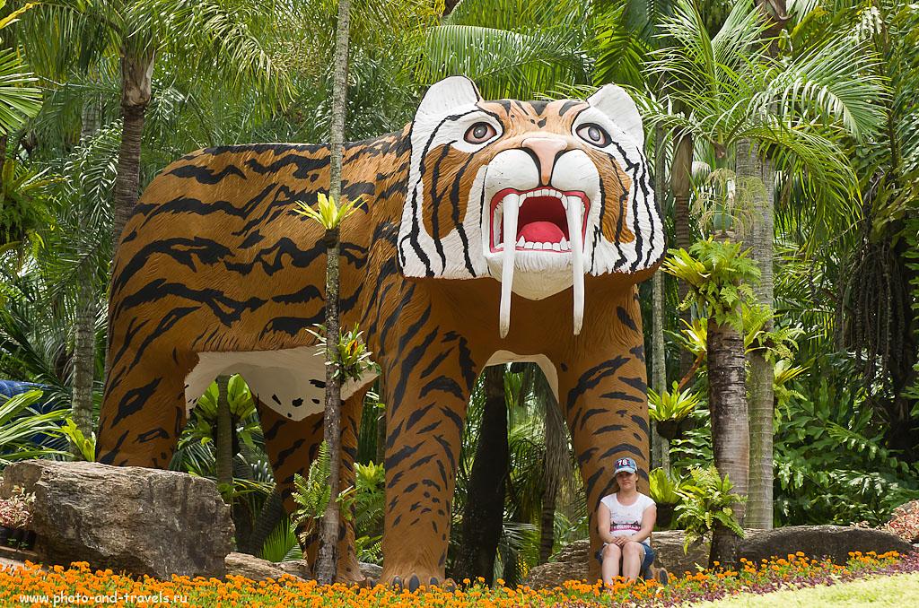 14.Саблезубый тигр в зверинце Nongnooch