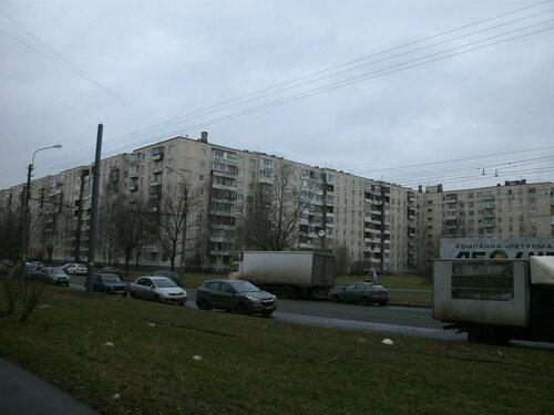 Будапештская ул. 110