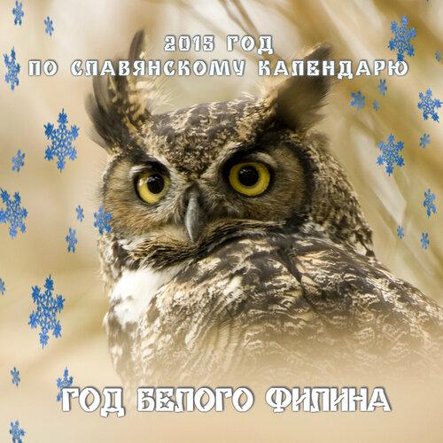 118936007_filin_beluyy[1].jpg