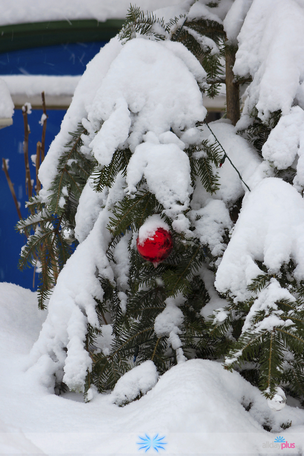 С наступающим Новым Годом ! | Зимняя сказка #1.