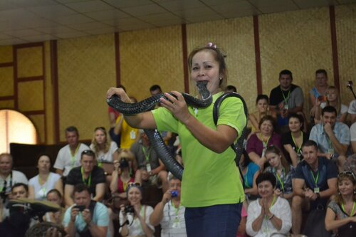Шоу змей в Таиланде