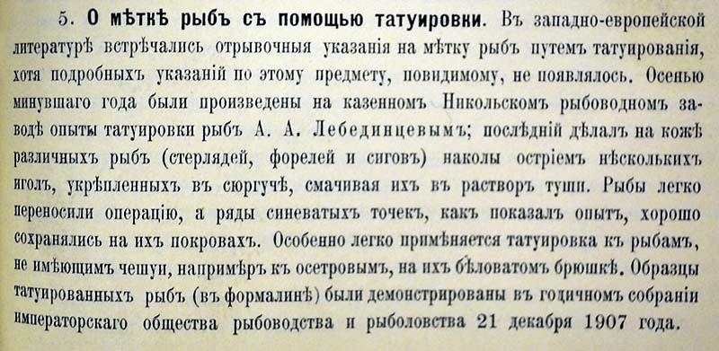О метке рыб с пом. татуировки 1908.jpg