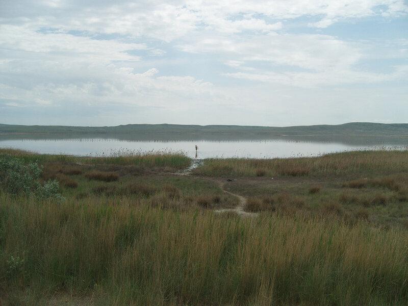соленое грязевое озеро Чокрак. Мне не хотелось мазаться