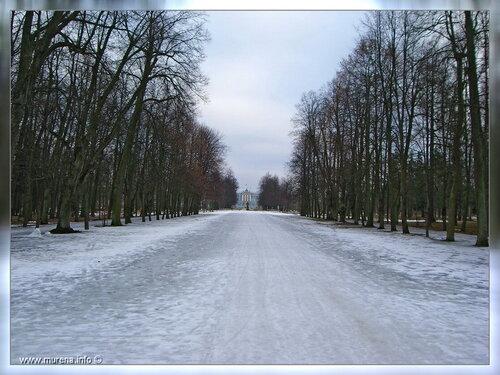 К Екатериннинскому дворцу