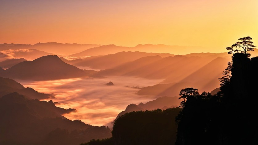 Фото: Zhonghua Meng