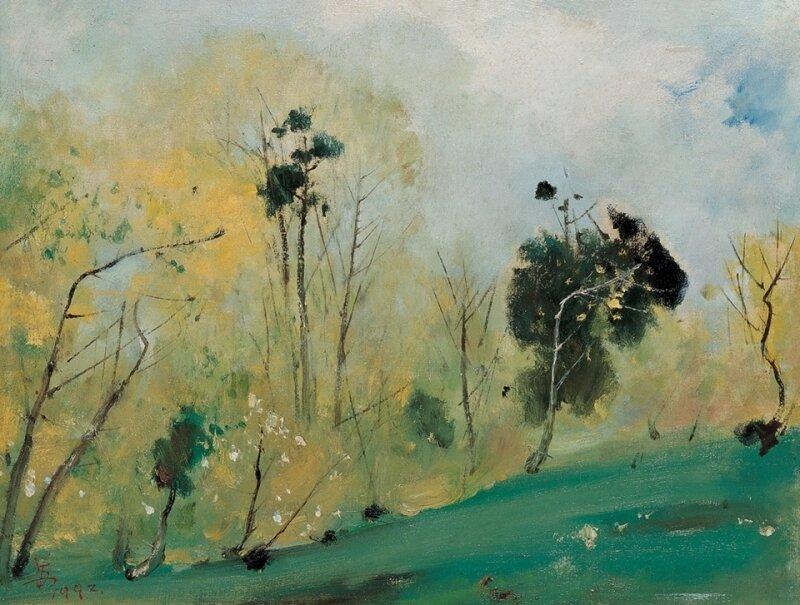 Китайский художник Su Tianci