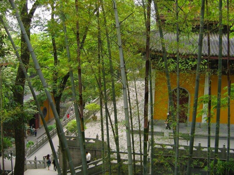Бамбуковая роща, Монастырь Линъиньсы, Ханчжоу