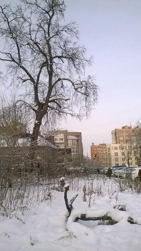 https://img-fotki.yandex.ru/get/194425/130932895.1f/0_121174_ca490290_XL.jpg