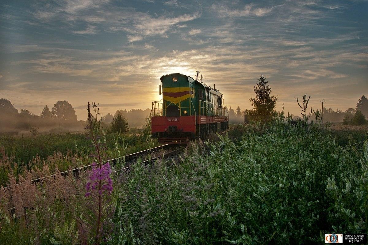 поезд весной в картинках для