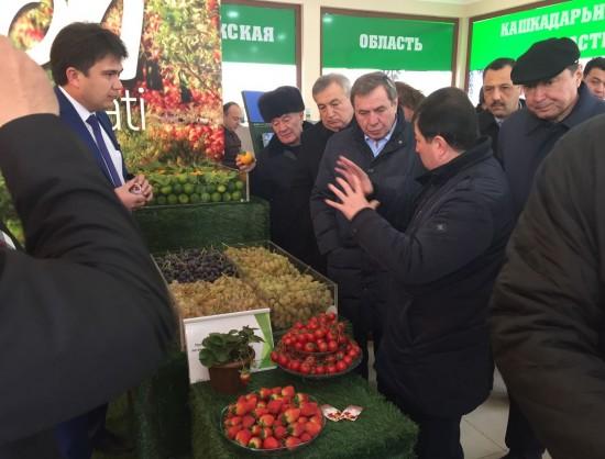 ВНовосибирске кконцу весны откроется оптово-розничный комплекс плодоовощной продукции изУзбекистана