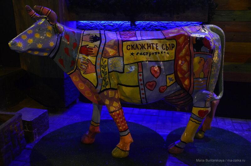 Корова, Саратов, Большая Казачья, 01 декабря 2016 года