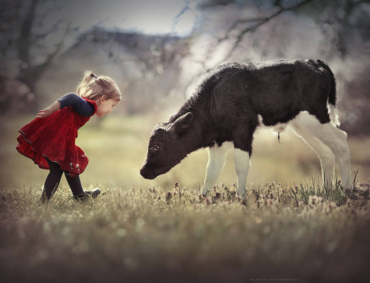 Images © Elena Shumilova / source