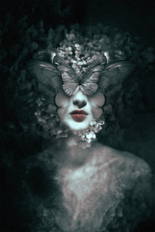 Photo Manipulations by Federico Bebber