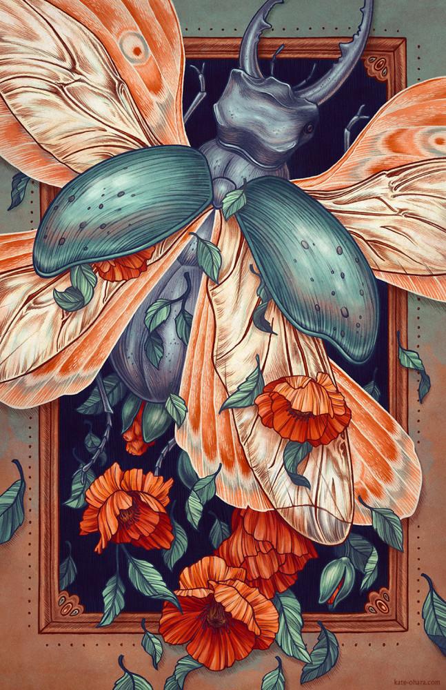 Illustrations by Kate O'Hara
