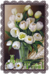 Для тебя белые тюльпаны.png