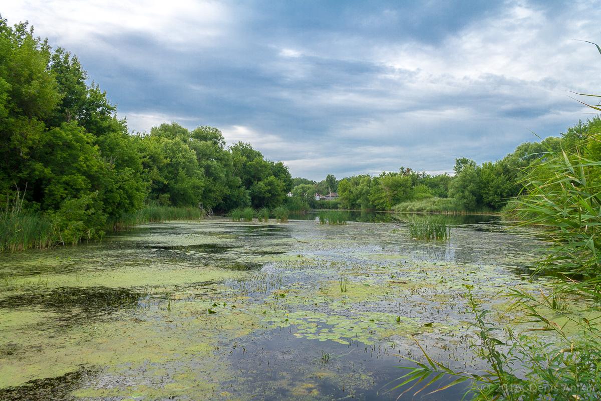 Калининск река Баланда плотина фото 3