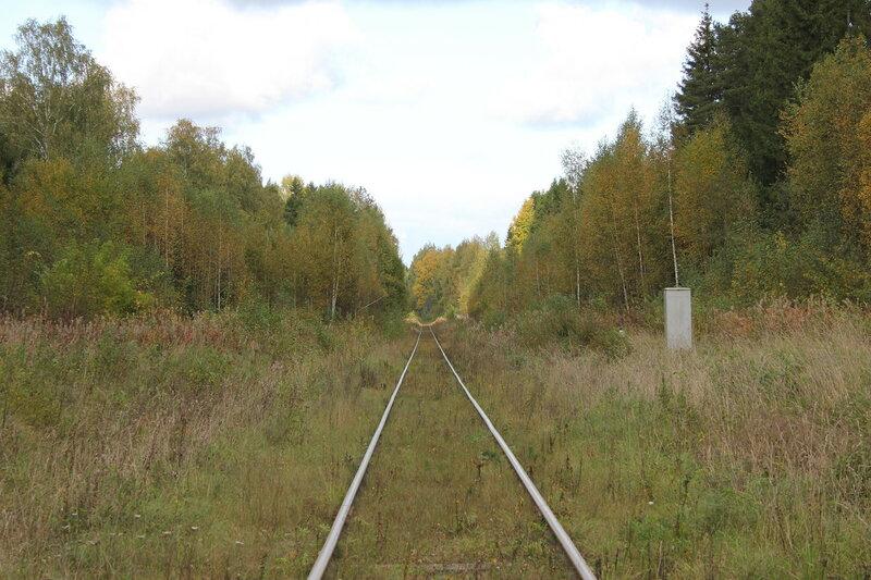 Переезд у платформы Ивановские казармы, вид на Весьегонск, крупнее