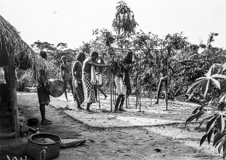 385. Мадугалла. Ритуальный танец лесных веддов