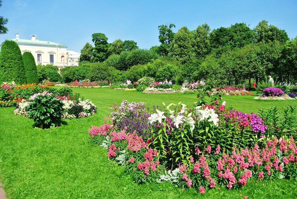 Цветущее лето Фрейлинского садика