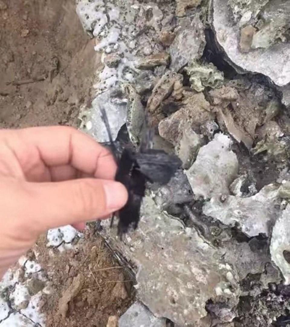 Таинственный объект упал с неба в Китае