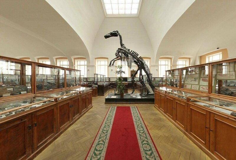 Секс в геологическом музее