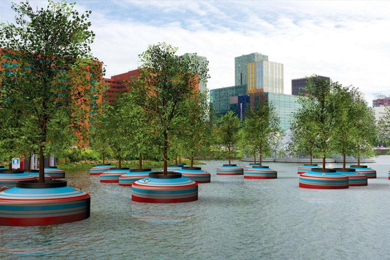В Роттердаме в нынешнем году появятся 20 плавающих деревьев.