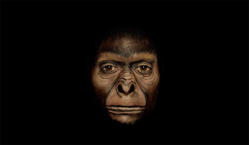 История человечества в одном лице