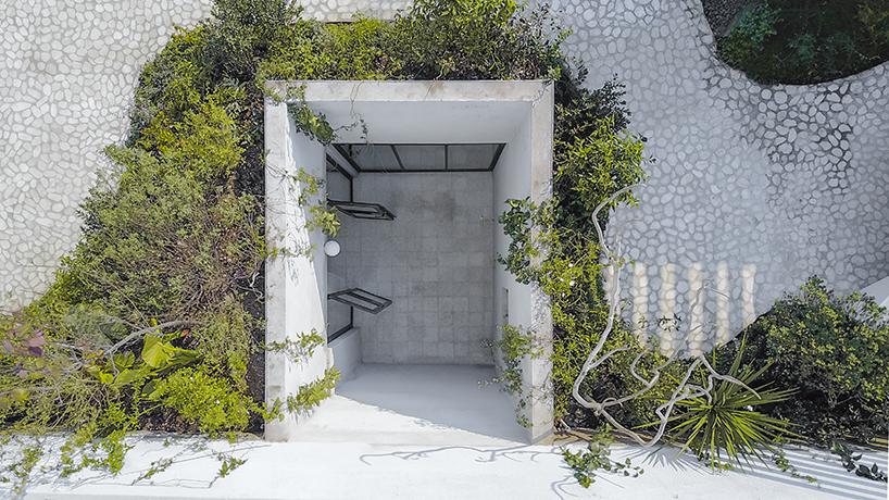 Частный дом с садом на крыше в Мексике