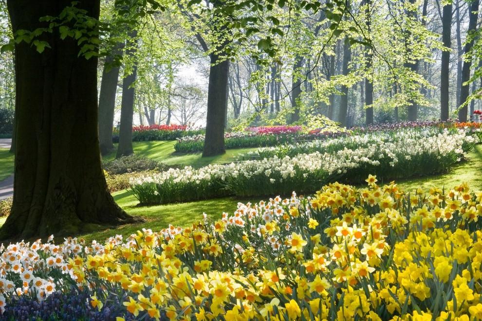Парк возле поместья Holker Hall в Картмеле, графство Камбрия, Англия.