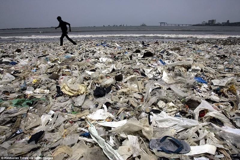 «Чемпион Земли»: как обычный человек очистил пляж от 5000 тонн мусора (11 фото)