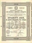 Акционерное общество сухой перегонки и химических производств   12500 рублей   1899 год, серия №07851