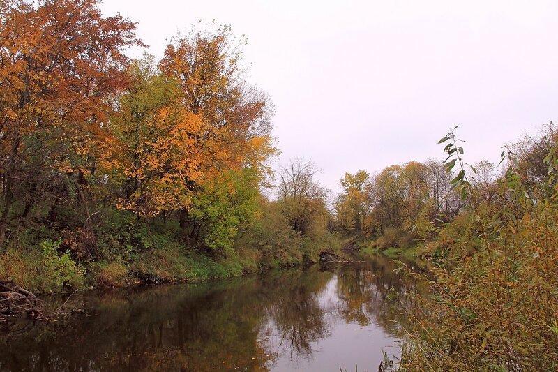 Багряные и золотые листья на деревьях над черной рекой Елховкой осенью