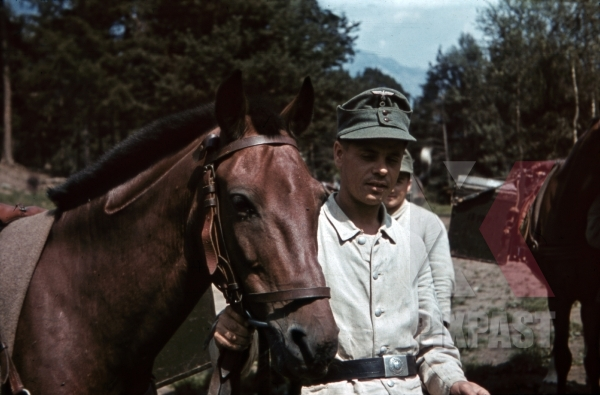 stock-photo-soldier-with-packhorse-in-landeck-austria-1941-pontlatz-kaserne-11308.jpg