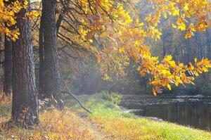 Осень и солнце