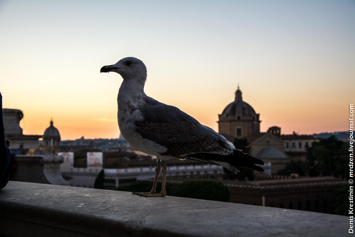 Рим. Витториано (Алтарь Отечества)