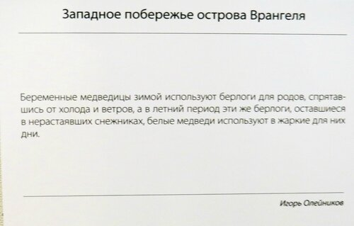 https://img-fotki.yandex.ru/get/194503/140132613.52e/0_21446f_e3ea11f5_L.jpg