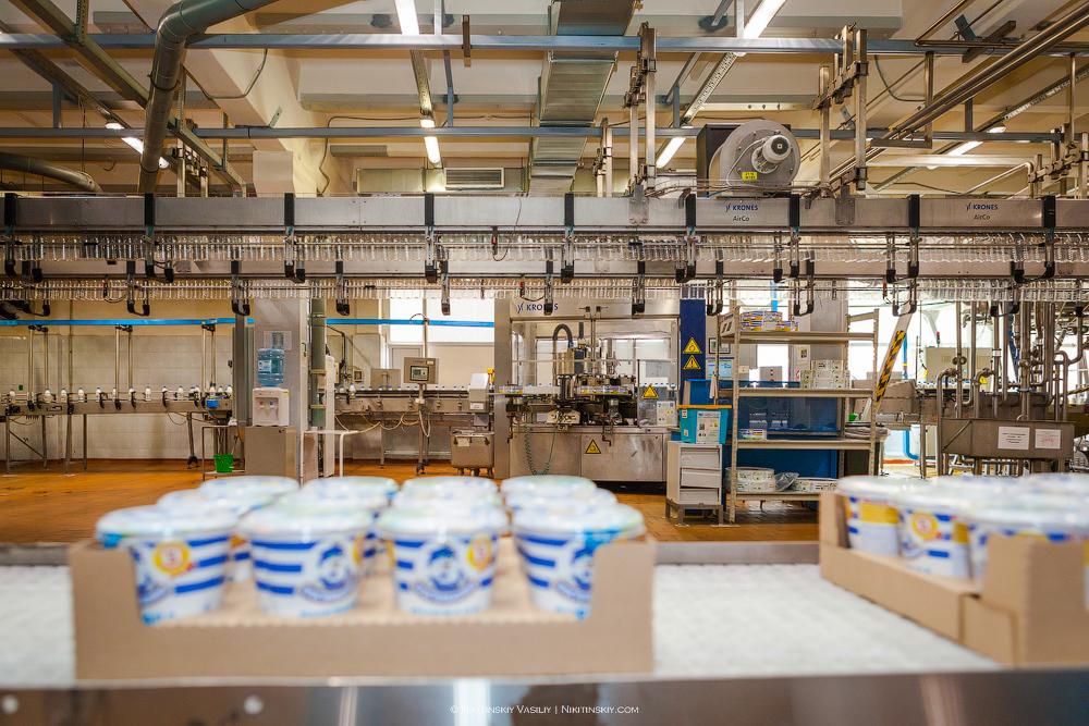 Как работает молочный завод