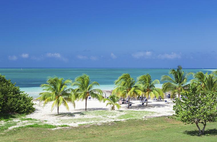 Кайо-Коко признан национальным заповедником Кубы. Здесь можно увидеть нетронутую человеком флору