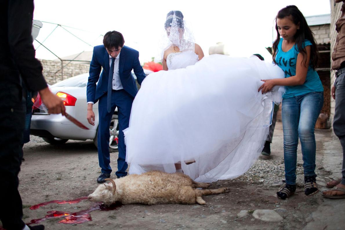Невеста и жених перешагивают через зарезанного барана в рамках свадебного обряда. В жизни этих девоч