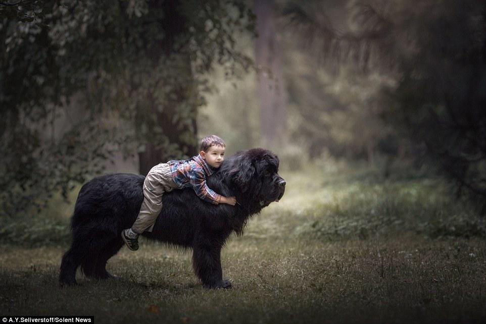Кому нужны лошади, когда есть такая собака? Федор, 3 года, верхом на ньюфаундленде Ринго, 75 кг.