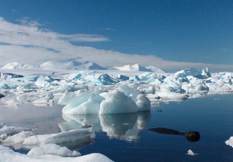 Мыс Денисон в Антарктиде, 12 декабря 2009. (Фото Pauline Askin | Files | Reuters):
